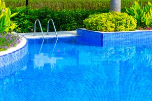 remove-pollen-from-your-pool-mid-city-custom-pools