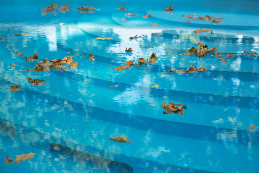 How To Keep Your Pool Leaf Free This Fall | Mid City Custom Pools southlake